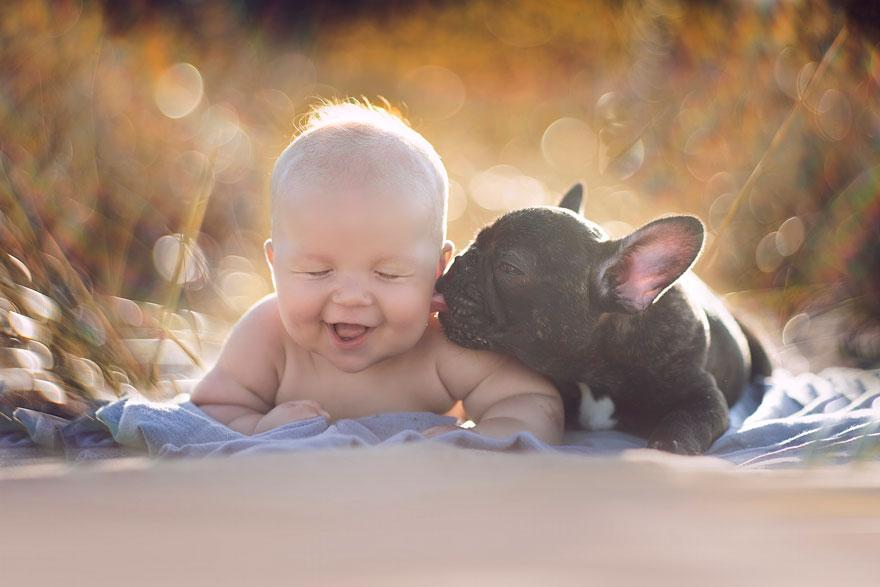 bebek köpek