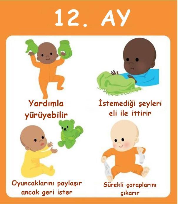 Bebeklerin Gelişimi 1 Yıl İçinde Nasıl İlerler