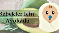 Bebeklere Avokado! Avokadonun Faydaları ve Bebekler İçin Kullanımı