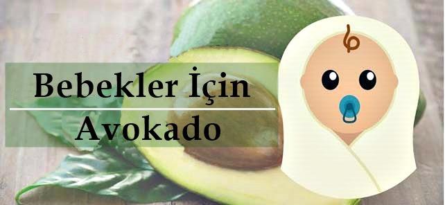 bebeklere avokado