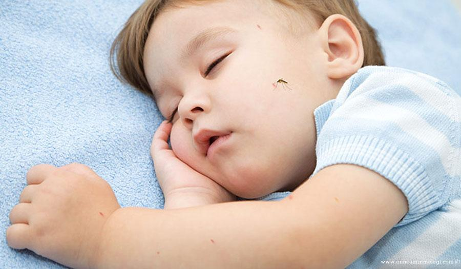 bebeklerde sınık ısırığı
