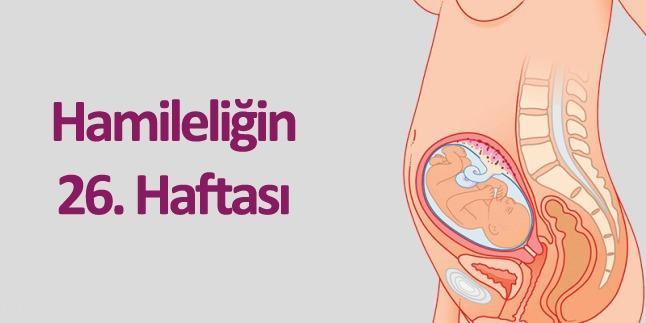hamileliğin 26.haftası
