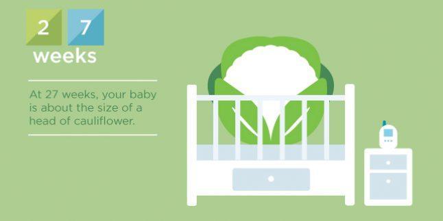 hamileliğin 27.haftası