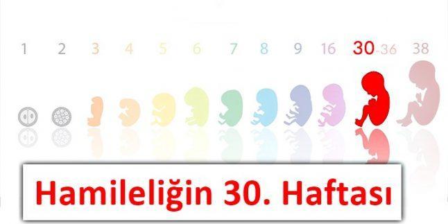 hamileliğin 30.haftası